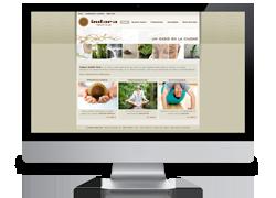 Diseño web de Indara