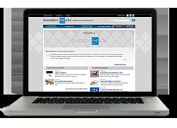 Web y publicidad Sematron